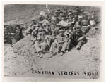 cambrian strikers
